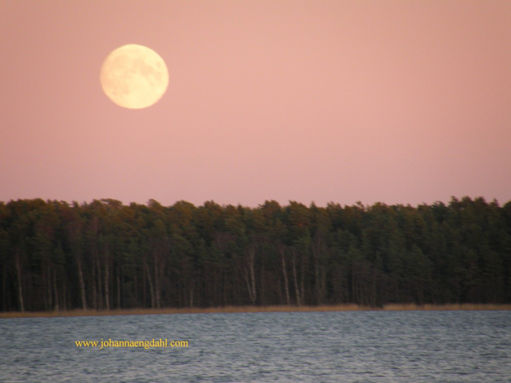 Mariehamn, Aland, Finland, 16 Nov. 2013 at 5 p.m.